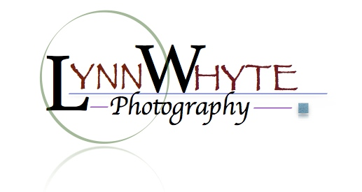 Lynn Whyte Photography